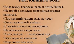 Поэма н.а.некрасова «дедушка»: тема, идея, основная мысль произведения