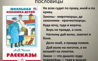 Русские пословицы о законе