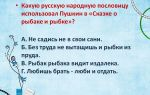Пословицы к сказкам пушкина